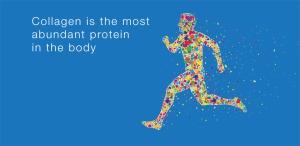 abundant-collagen