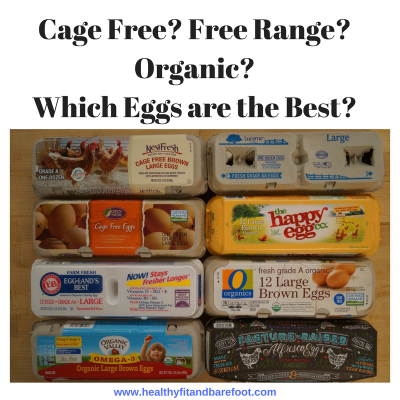 Cage Free- Free Range- Organic- Which Eggs are the Best? | Healthy, Fit & Barefoot!