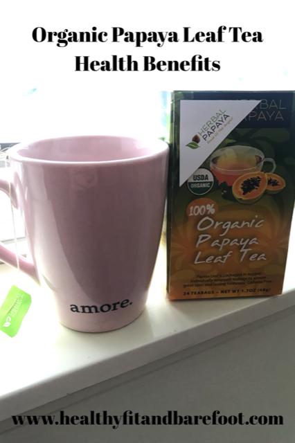 Organic Papaya Leaf Tea Health Benefits | Healthy, Fit & Barefoot!